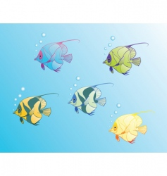 magic fishes vector image