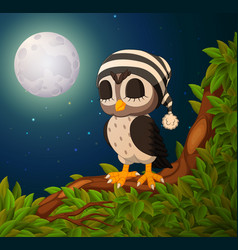 owls on the tree branch in night vector image