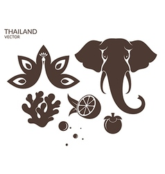Thailand Animal Fruit vector image vector image