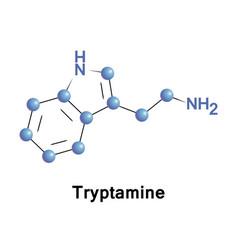 tryptamine is a monoamine alkaloid vector image