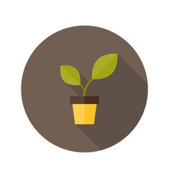 Pot with green plant flat icon vector