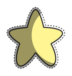 cuite light star image vector image