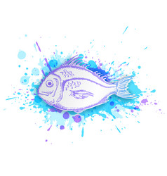 fish on a blue background vector image vector image