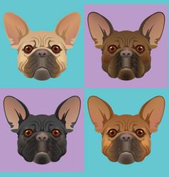 french-bulldog-01 vector image vector image
