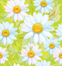 seamless pattern of white camomiles vector image