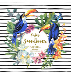 Summer greeting card with pair of toucan exotic vector