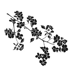 twig apple-tree blossoms vector image vector image