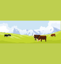 cows in a meadow vector image vector image
