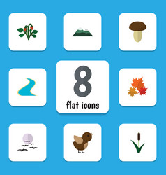 Flat icon nature set of peak bird champignon and vector