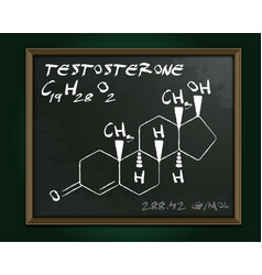 Testosterone molecule image vector