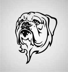 Bulldog Face vector image