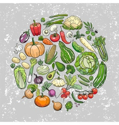 Hand drawn vegetables background vector