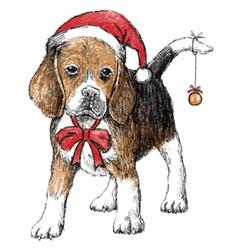 beagle hat vector image