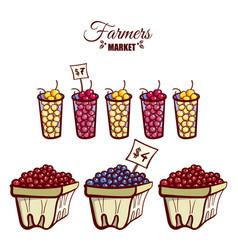 farmers market ripe berries vector image vector image