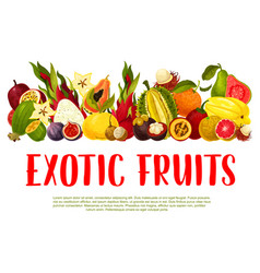 Poster for tropical exotic fruits vector
