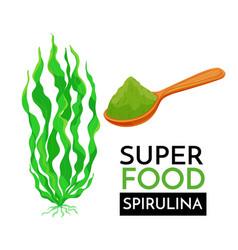 spirulina icon vector image