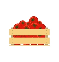 Fresh tomatoes in wooden crate isolated on white vector image