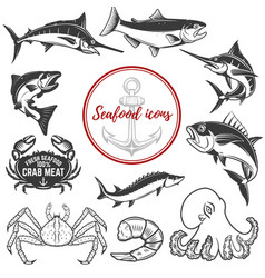 Set of seafood icons isolated on white background vector