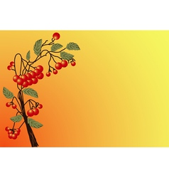 Red rowan 2 vector
