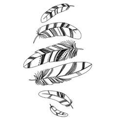 Black decorative feathers isolated on white vector image