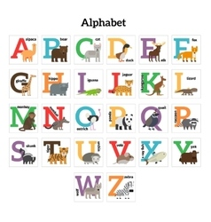 English animals zoo alphabet vector