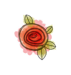 Watercolor drawing of button red rose with leaves vector
