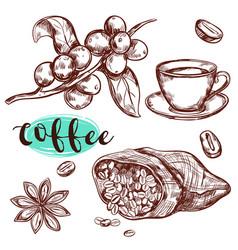 coffee branch icon set vector image