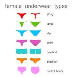 Female underwear types vector