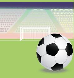 A soccer football field with soccer ball in the vector