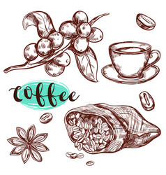 coffee branch icon set vector image vector image