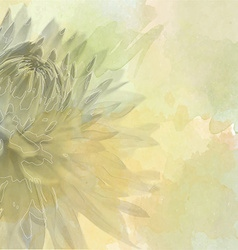 Flower background on soft pastel color in blur vector