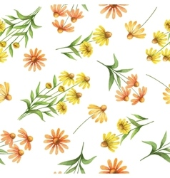 Watercolor seamless pattern with echinacea flowers vector image vector image