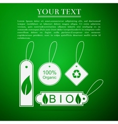 Eco tags flat icon on green background vector