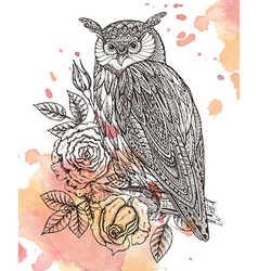 Wild totem animal - owl in ornamental gra vector