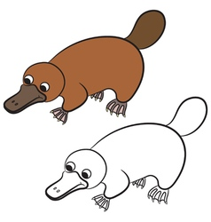 Cartoon of platypus or duckbill vector