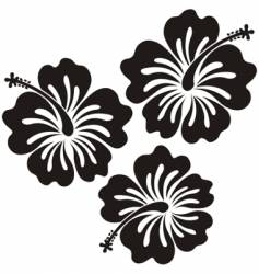 Honolulu flower vector