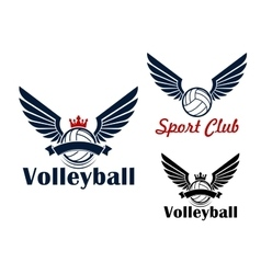 Volleyball game symbol with winged balls vector image