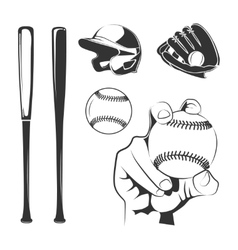 elements for baseball club labels vector image