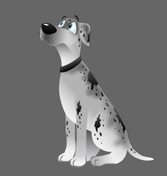 Dog great dane white sitting vector
