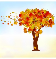 Maple tree autumn leaf fall eps 8 vector