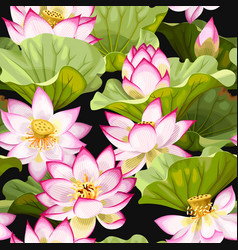 Seamless pattern with lotus flowers vector