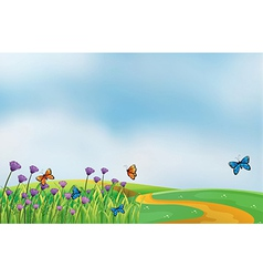 Butterflies in field vector