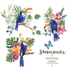Set of vintage summer toucan butterflies vector