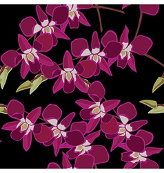 Floral seamless pattern with orchids hand-drawing vector