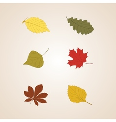 Autumn leaves set background vector