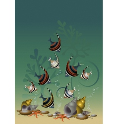 Motley fish and starfish among algae and shells vector