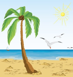 Palm tree on sand beach vector