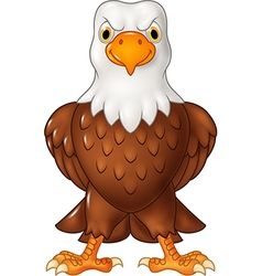 Cartoon bald eagle posing isolated vector image vector image