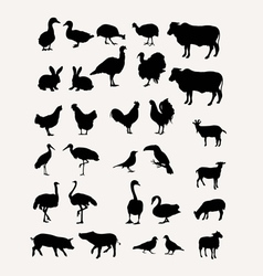 Livestock silhouettes vector