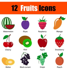 Flat design fruit icon set vector image